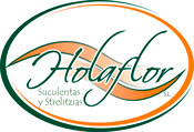 Logotipo HolaFlor